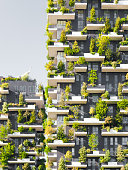 """Milan, Italy - September 19, 2015: """"Bosco Verticale"""" (literally """"Vertical Forest"""") is a complex of two residential towers in the modern district of Porta Nuova in Milan; their peculiarity is that they host hundreds of trees and plants in the facades."""