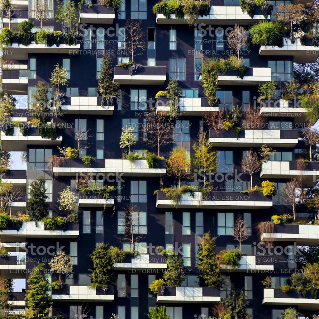 Vertikaler Wald – Foto