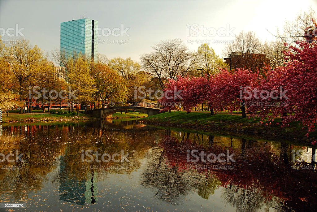 Boston from the Charles Rover Espanade stock photo