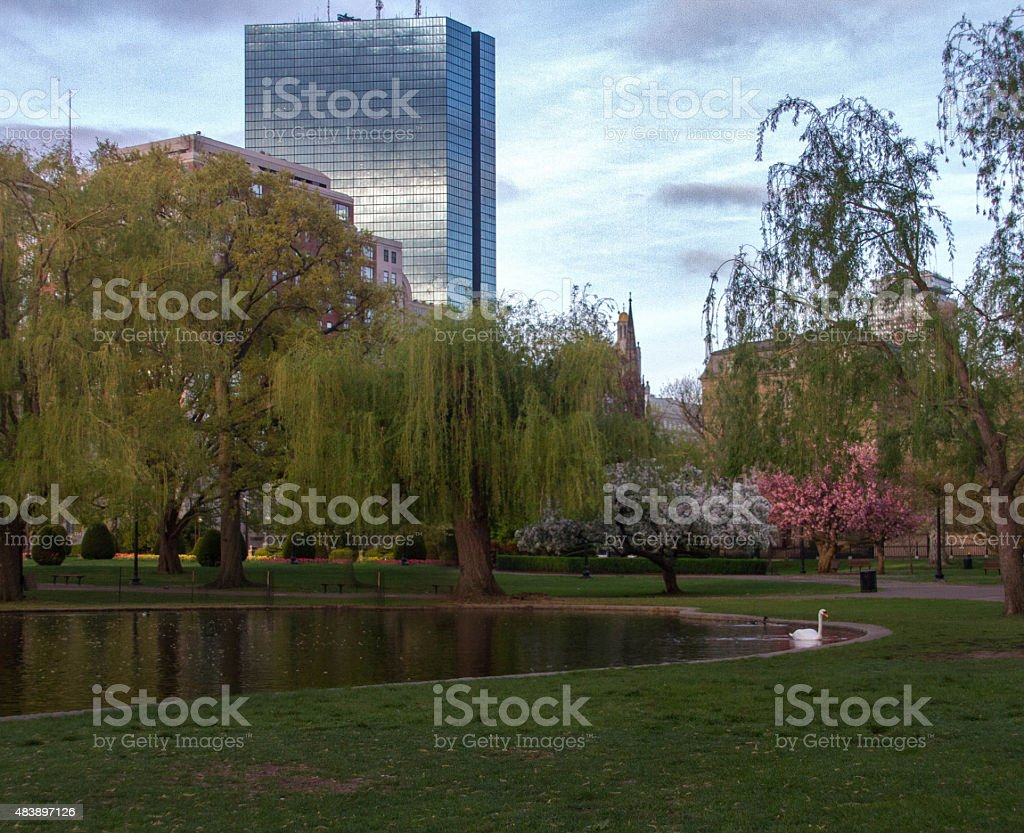 Boston Gardens Stock Photo & More Pictures of 2015 | iStock
