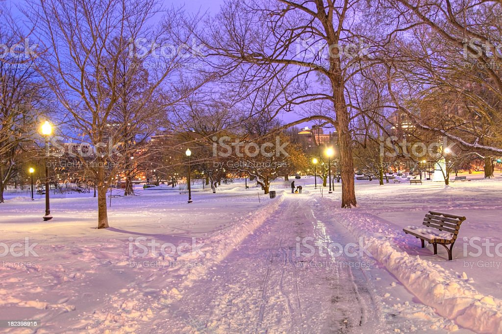 Boston Public Garden royalty-free stock photo