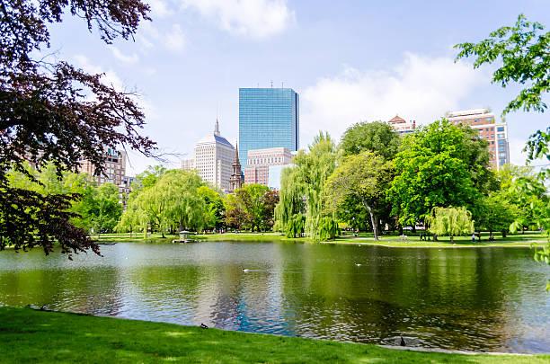 Giardino pubblico di Boston - foto stock
