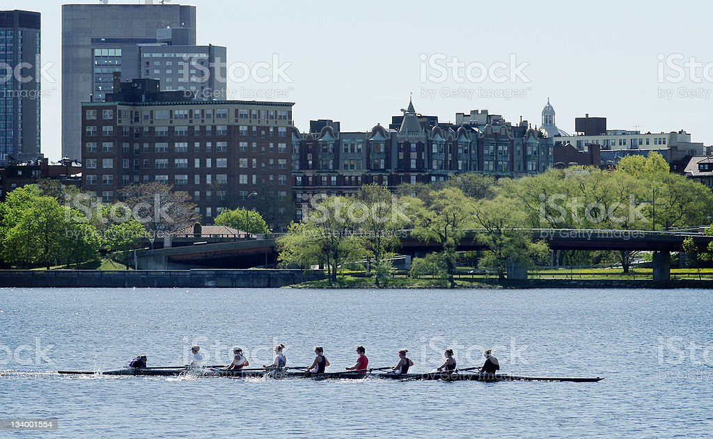 Boston Rowing stock photo