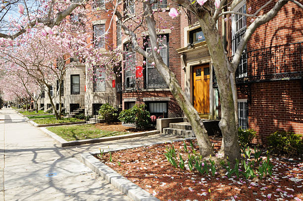 Boston University in early spring stock photo