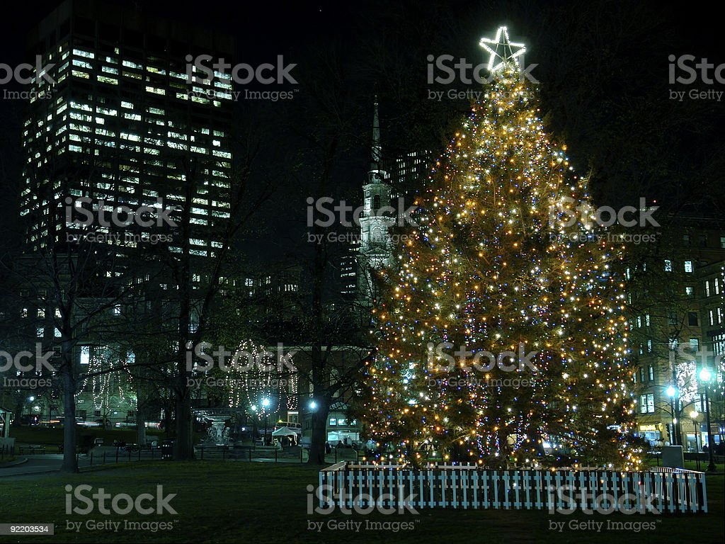 Boston's Christmas Tree stock photo