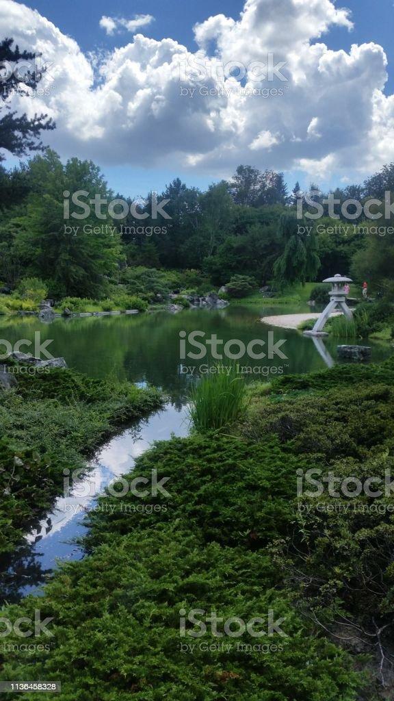 Botanische tuin foto
