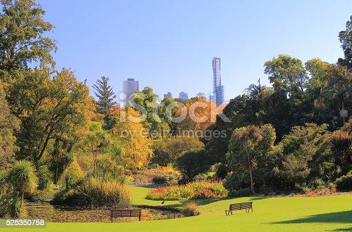 istock Botanic Gardens Melbourne Australia 525350758