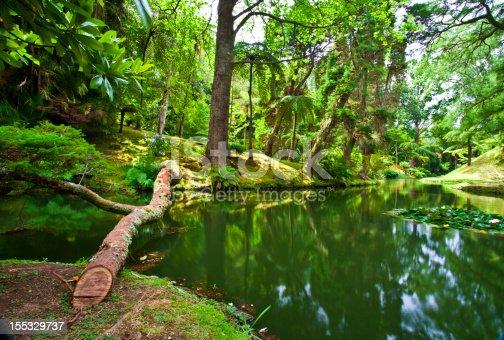 istock Botanic gardens 155329737