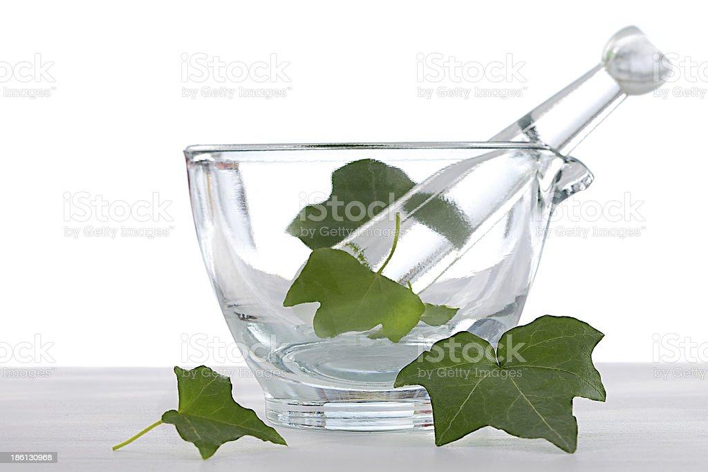 botanic .heath-care -ivy leaf  essential oil royalty-free stock photo
