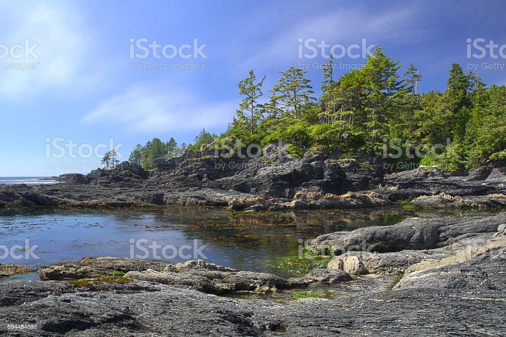 Botanical Beach in Juan de Fuca Provincial Park stock photo