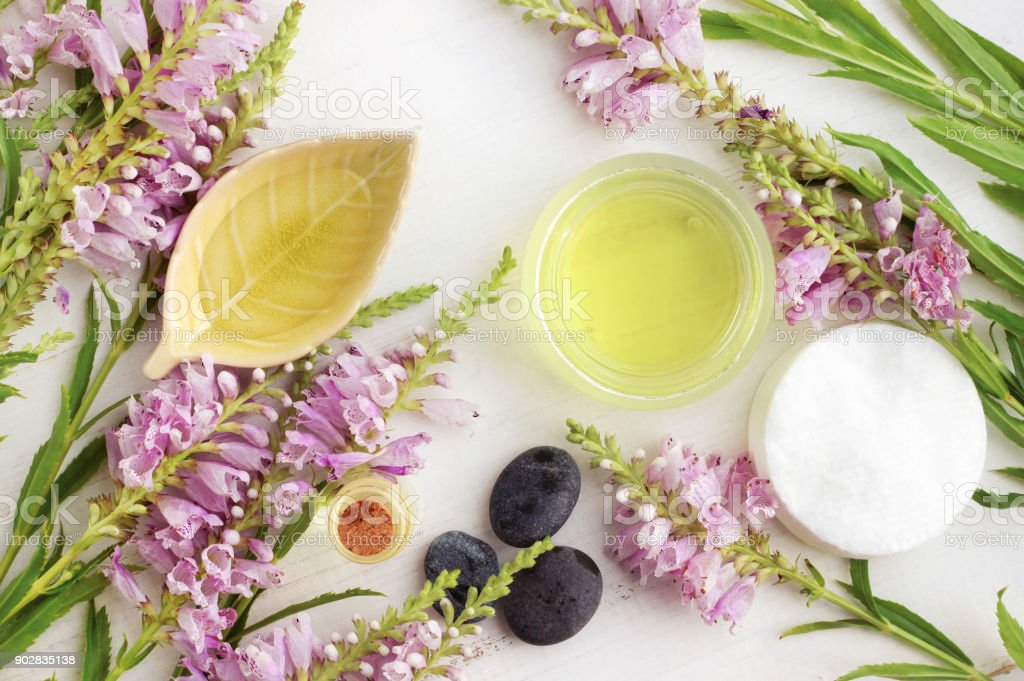 Botanical beauty treatment with essential oils stock photo