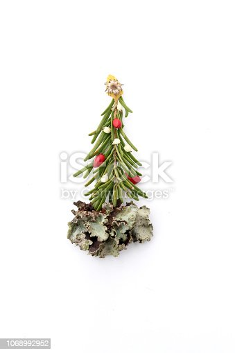 Christmas tree made from pine or fir branch, snow berries, rose hips, leaves and flowers. All natural, decorated with a daisy star and lichen skirt.
