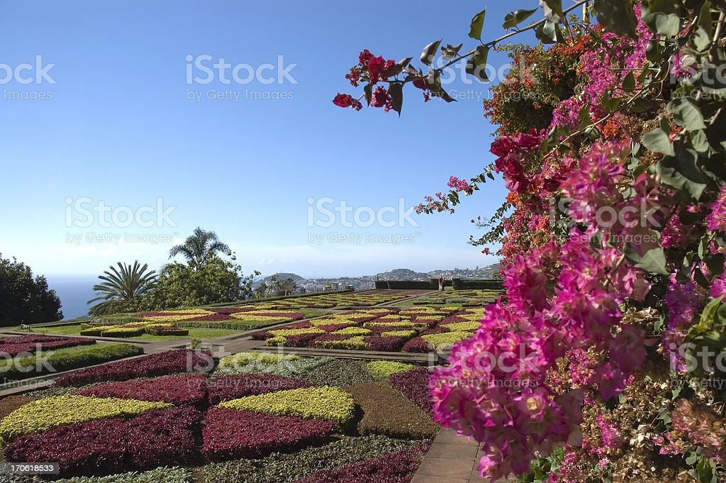 Botanical Garden, Funchal, Madeira stock photo