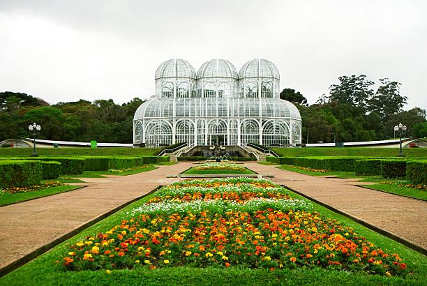 botanical garden greenhouse - curitiba stock photos and pictures