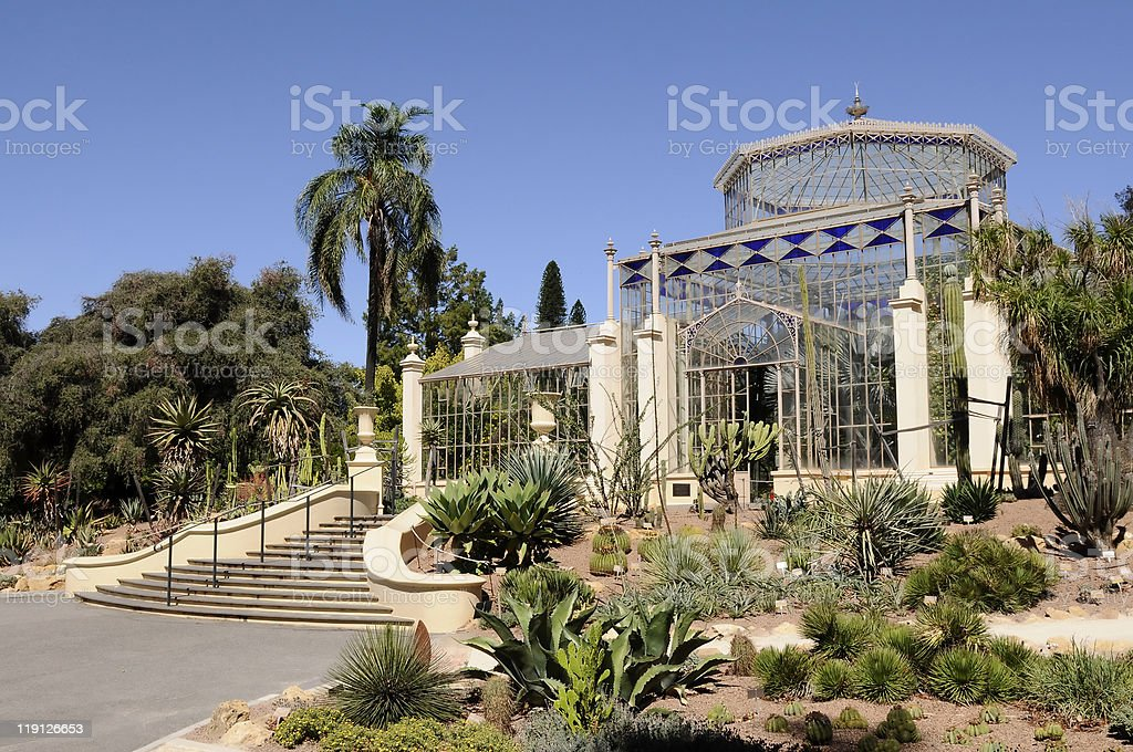 Botanical garden in a sunny day stock photo