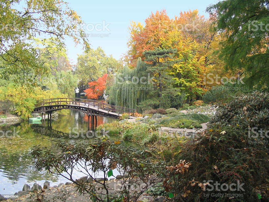 botanical garden in autumn royalty-free stock photo