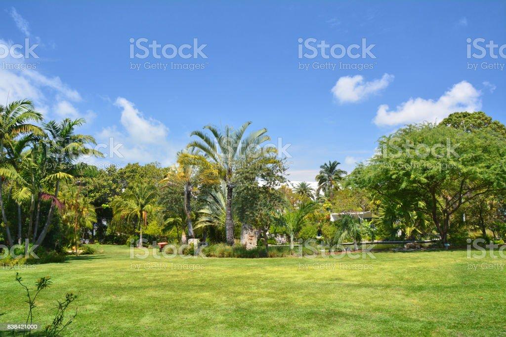 Botanical garden in Miami stock photo