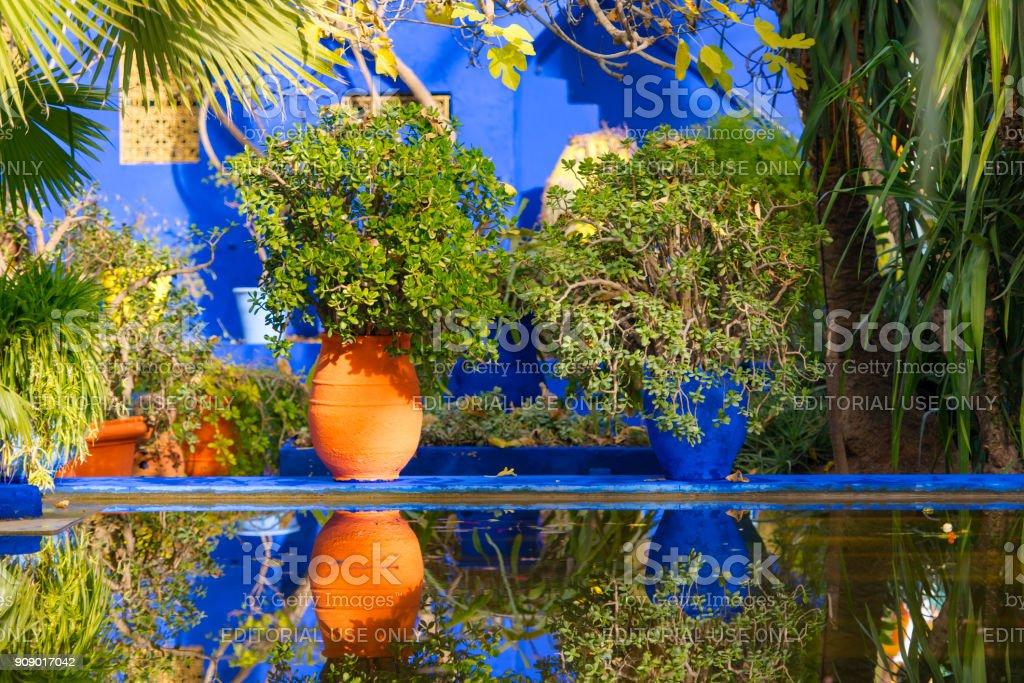 Botanischer Garten Jardin Majorelle In Marrakesch Oder Marrakech In