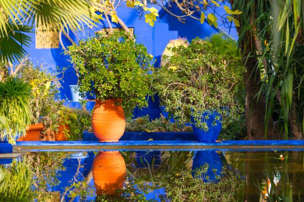Jardin Majorelle Photos Et Images Libres De Droits Istock