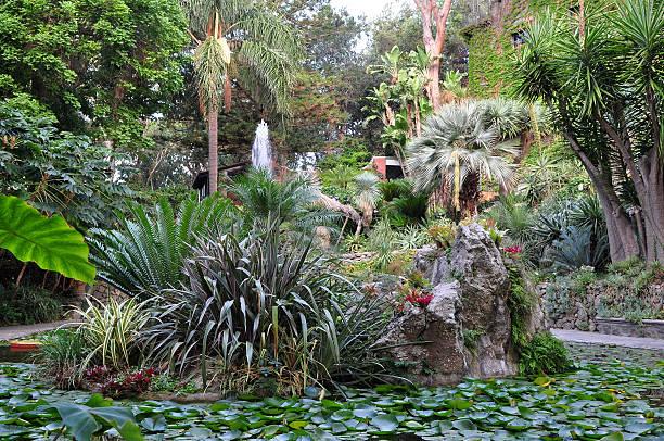 botanical garden La Mortella,Ischia,Italy stock photo