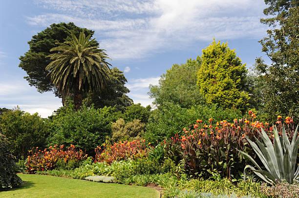 Botanischer Garten, Melbourne – Foto