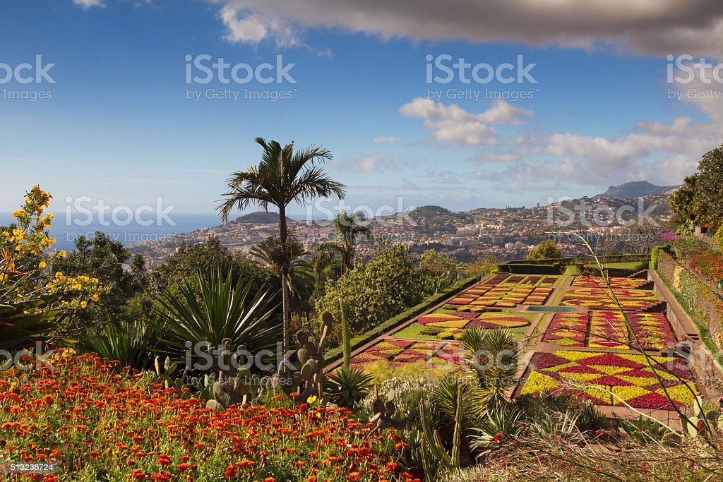 Botanical garden of Funchal stock photo