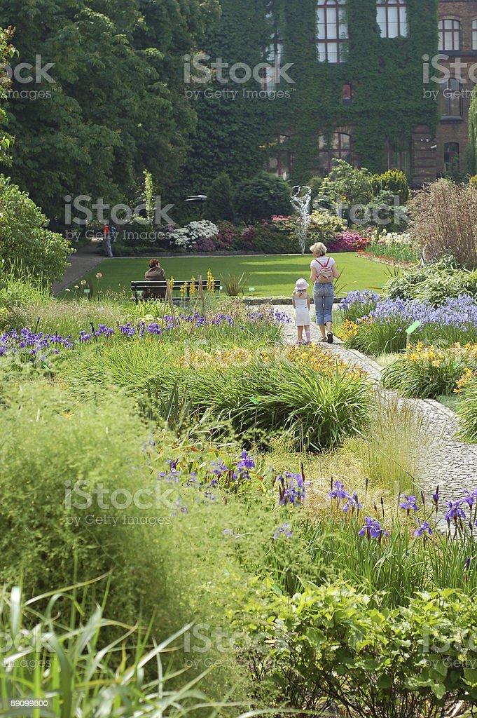 Ботанический сад Стоковые фото Стоковая фотография