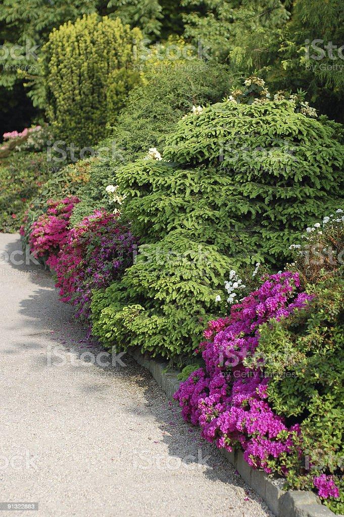 botanical garden stock photo