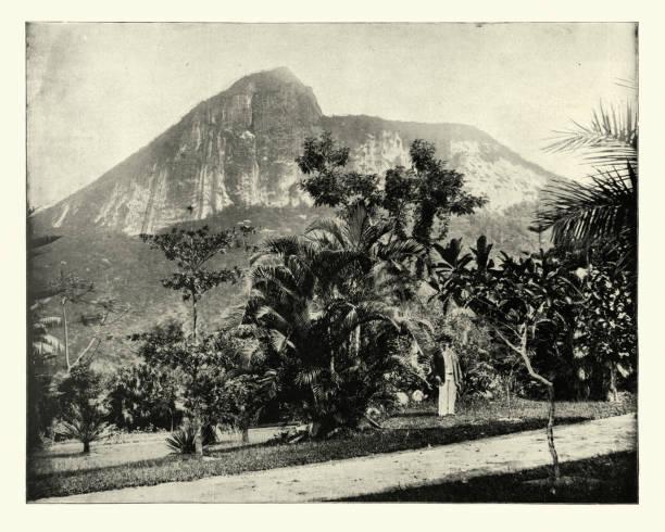 Botanical gardens and Mount Corcovado, Rio de Janeiro, Brazil stock photo