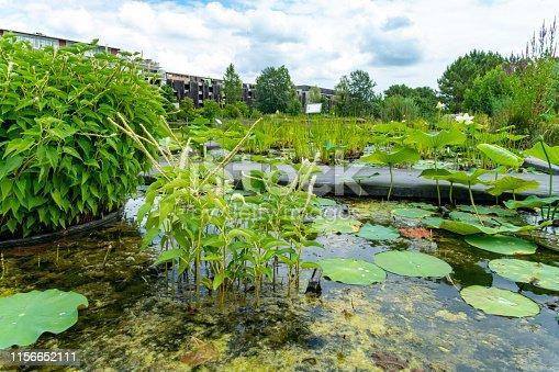 The free to enter Botanical Gardens Bordeaux, France.
