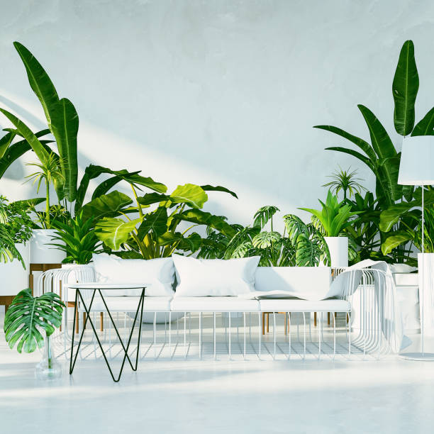 Botanical interior - Tropical design living room / 3D render image Botanical interior - Tropical design living room / 3D render image houseplant stock pictures, royalty-free photos & images