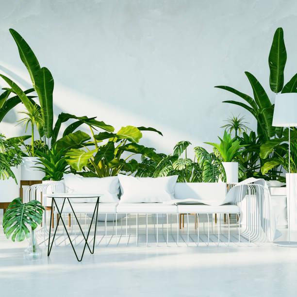 botanische - tropische interieur woonkamer / 3d afbeelding weergegeven - kamerplant stockfoto's en -beelden