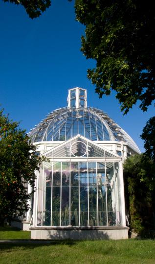 Botanics Glasshouse Stock Photo - Download Image Now