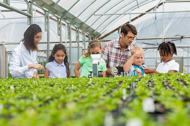 Botanist leads elementary school field trip stock photo