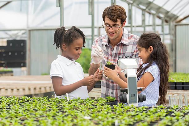 botanist teaches elementary students about botany - teacher school solo imagens e fotografias de stock