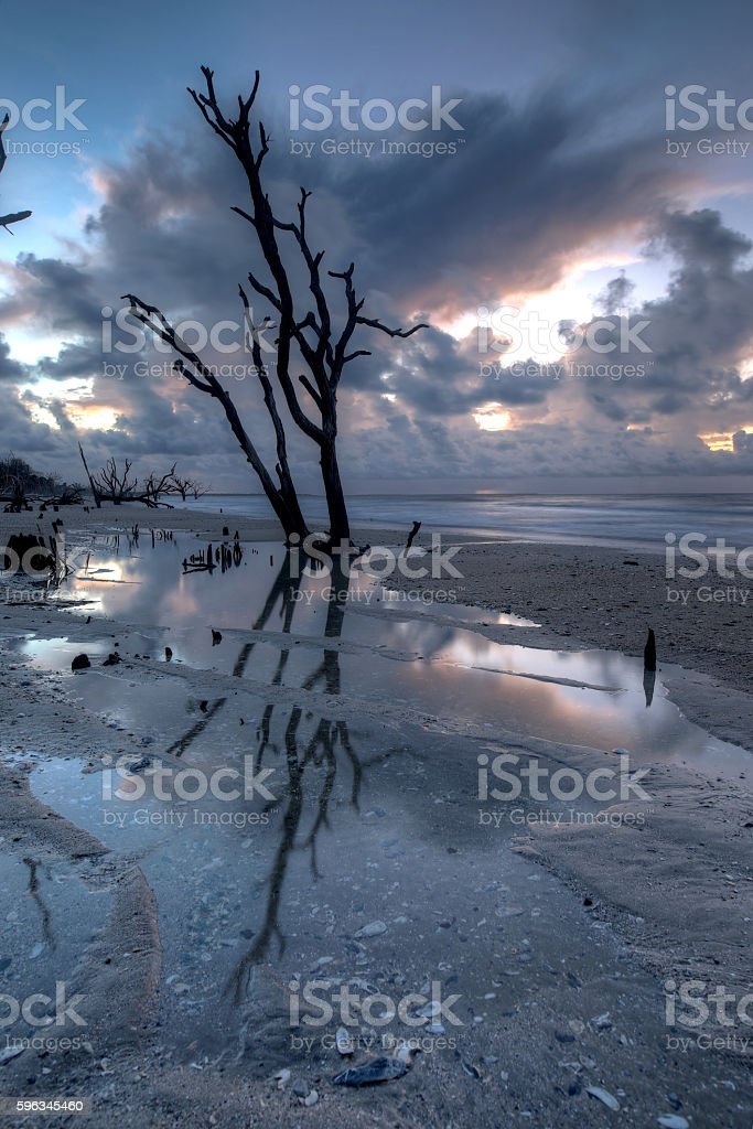 Botany Bay at sunrise royalty-free stock photo