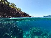 上と海岸線、グアドループ、フランス領カリブ海諸国の水の下で両方。