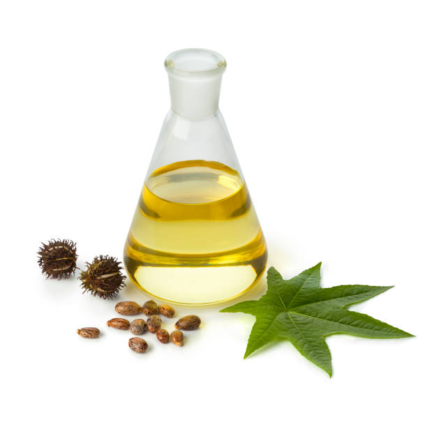 Botlle castor oil with fruit, seeds and leaf Botlle castor oil with fruit, seeds and leaf isolated on white background biodiesel stock pictures, royalty-free photos & images