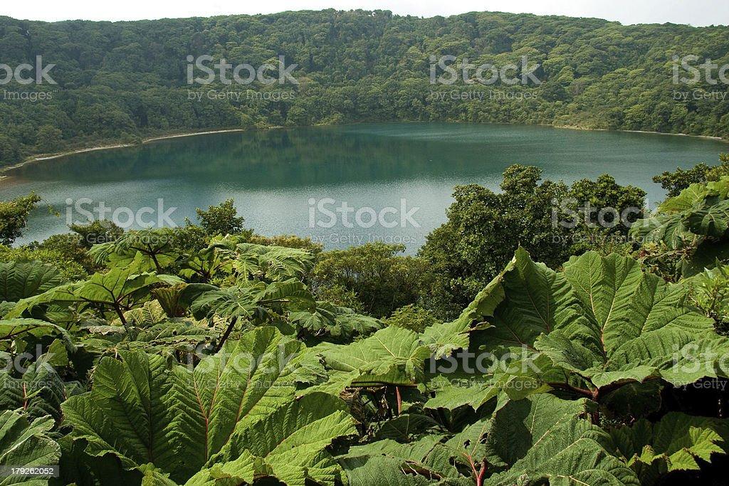Botos Lagoon stock photo