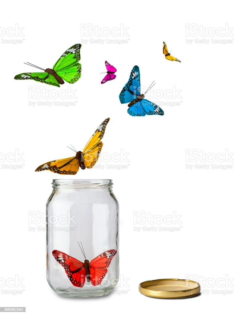 Bottle and Butterflies stock photo