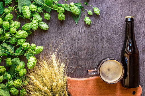 istock Bottle and Glass beer with Brewing ingredients. Hop flower with wheat. Top view 858220174