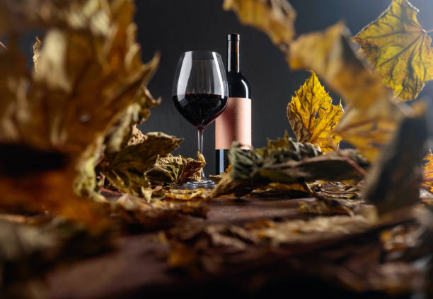 Bottle and glass of red wine on a table with dried vine leaves. Selective focus. stock photo