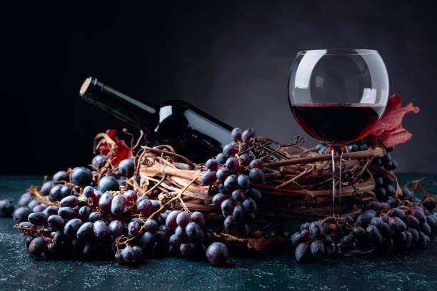 Bottle and glass of red wine with grapes. stock photo