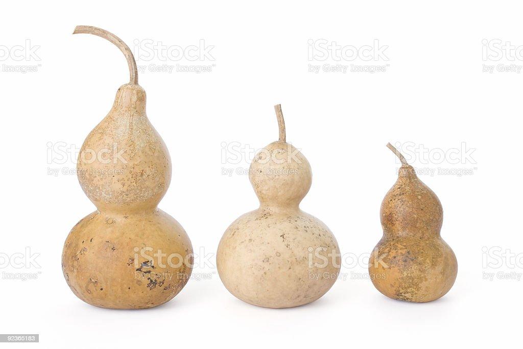 Flasche gourds, isoliert auf weiss Lizenzfreies stock-foto