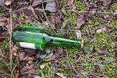 bottle in the grass