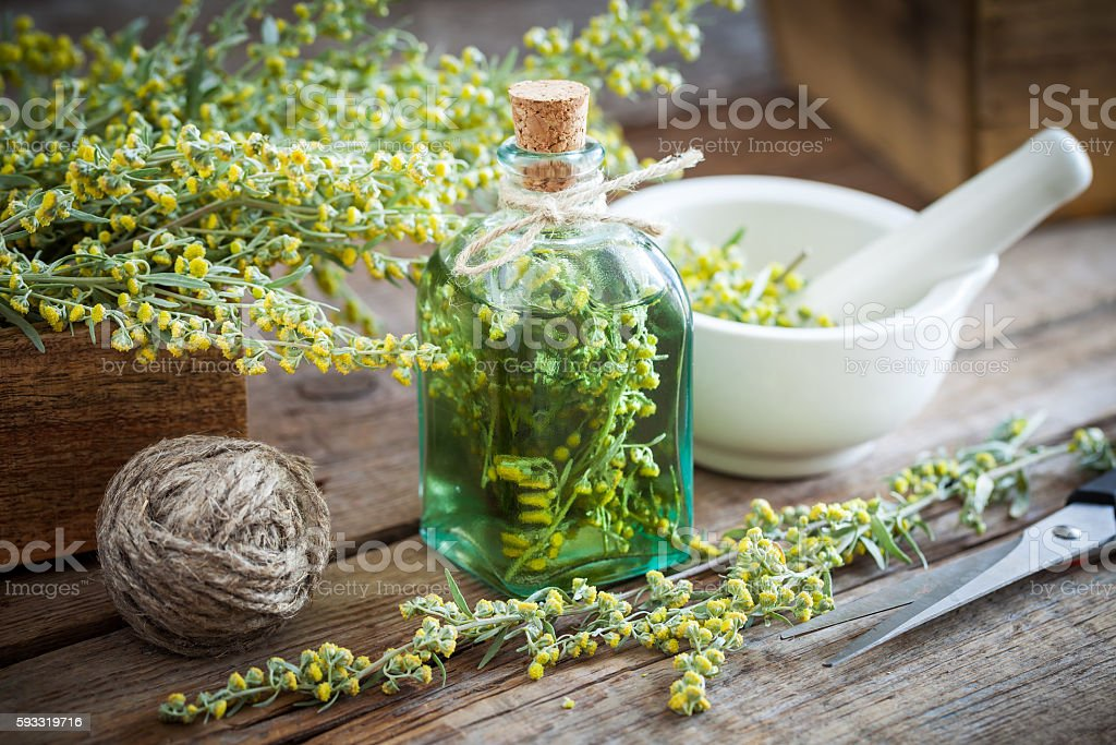 Bottle of absent or tincture of tarragon healthy herbs stock photo