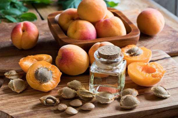 A bottle of apricot kernel oil stock photo
