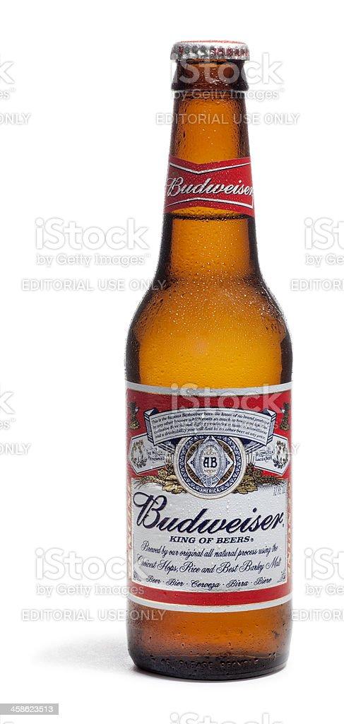 Bottle of Budweiser Beer on White stock photo