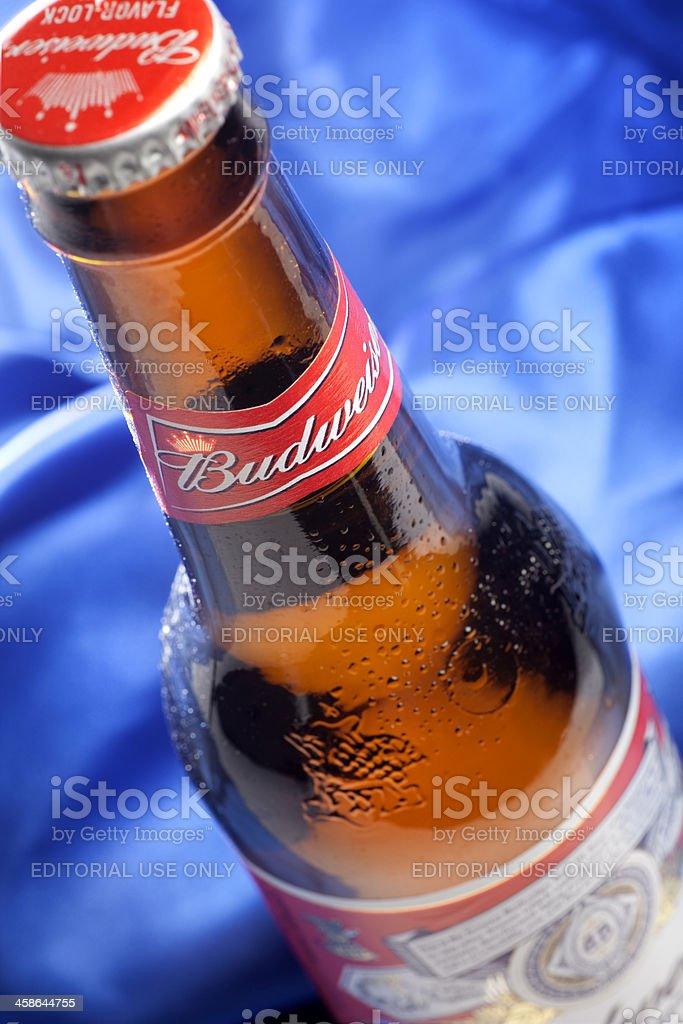 Bottle of Budweiser Beer stock photo
