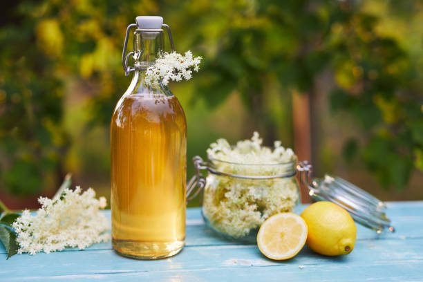 Flasche Holunderblütensirup und Holunderblüten – Foto
